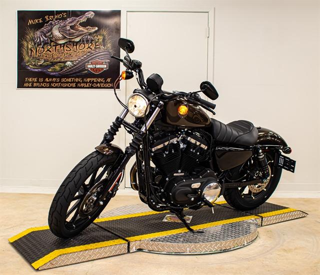 2020 Harley-Davidson XL883N at Mike Bruno's Northshore Harley-Davidson