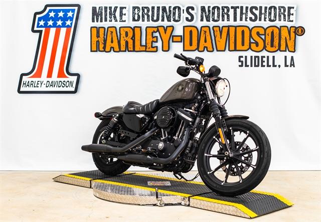 2019 Harley-Davidson XL883N at Mike Bruno's Northshore Harley-Davidson