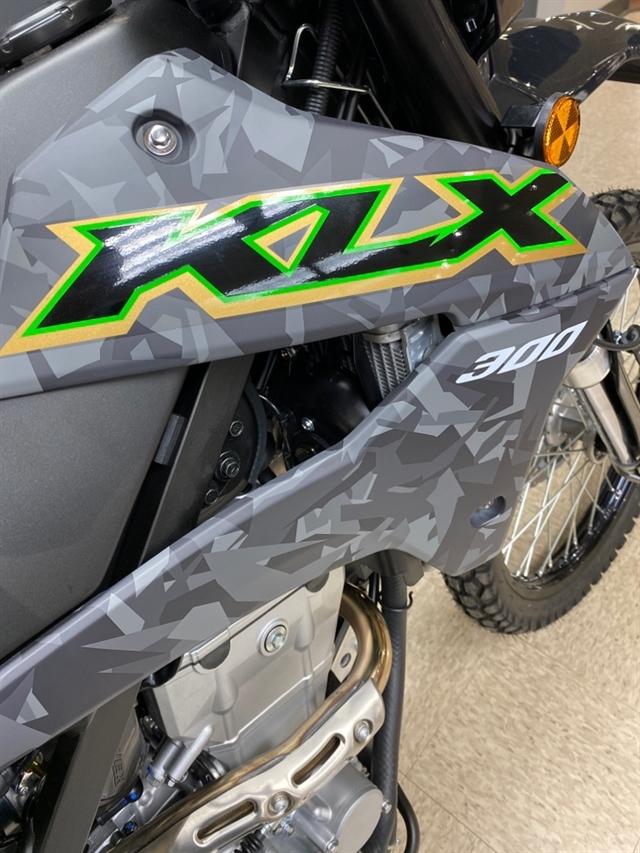 2021 Kawasaki KLX 300 at Sloans Motorcycle ATV, Murfreesboro, TN, 37129