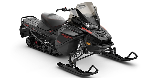 2019 Ski-Doo Renegade Enduro 900 ACE Turbo at Hebeler Sales & Service, Lockport, NY 14094