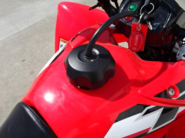 2019 Honda TRX250X Semi Automatic at Genthe Honda Powersports, Southgate, MI 48195