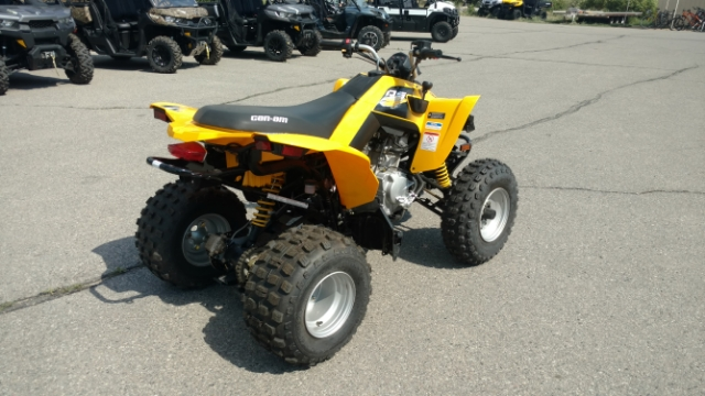 2018 Can-Am DS 250 250 at Power World Sports, Granby, CO 80446