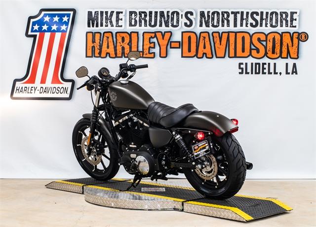 2021 Harley-Davidson XL883N at Mike Bruno's Northshore Harley-Davidson
