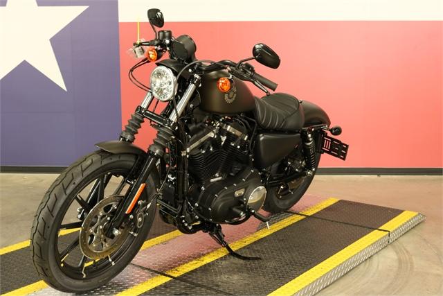 2021 Harley-Davidson Street XL 883N Iron 883 at Texas Harley