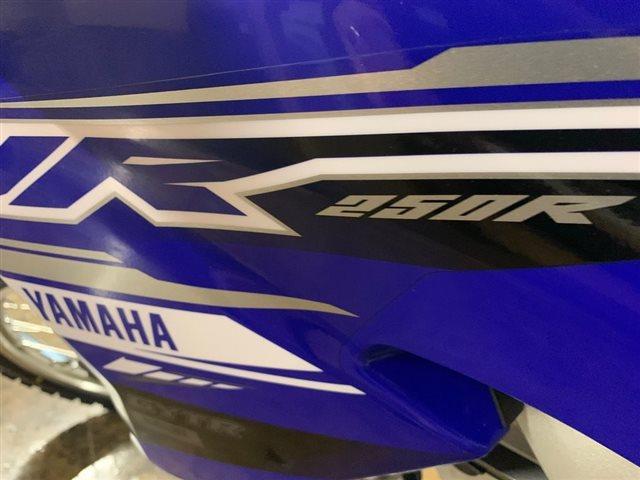 2019 Yamaha WR250FK 250F at Powersports St. Augustine