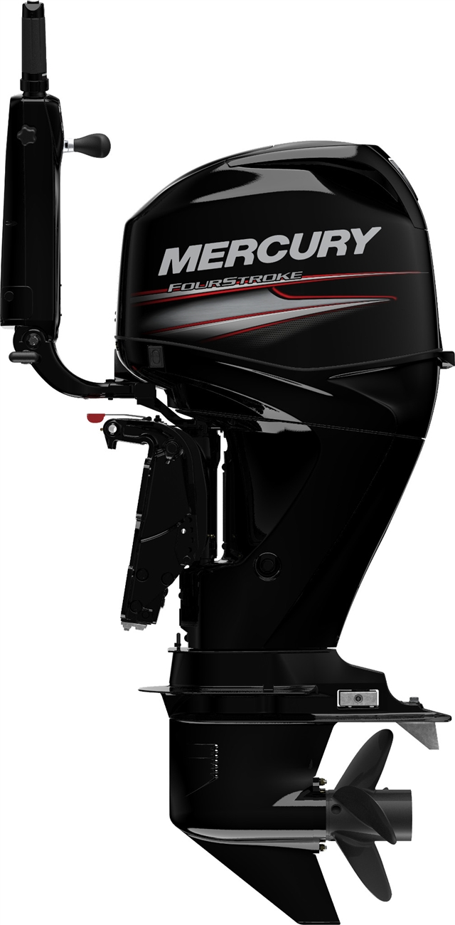2019 Mercury Marine 50 ELHPT CT Big Tiller Big Tiller at Fort Fremont Marine, Fremont, WI 54940