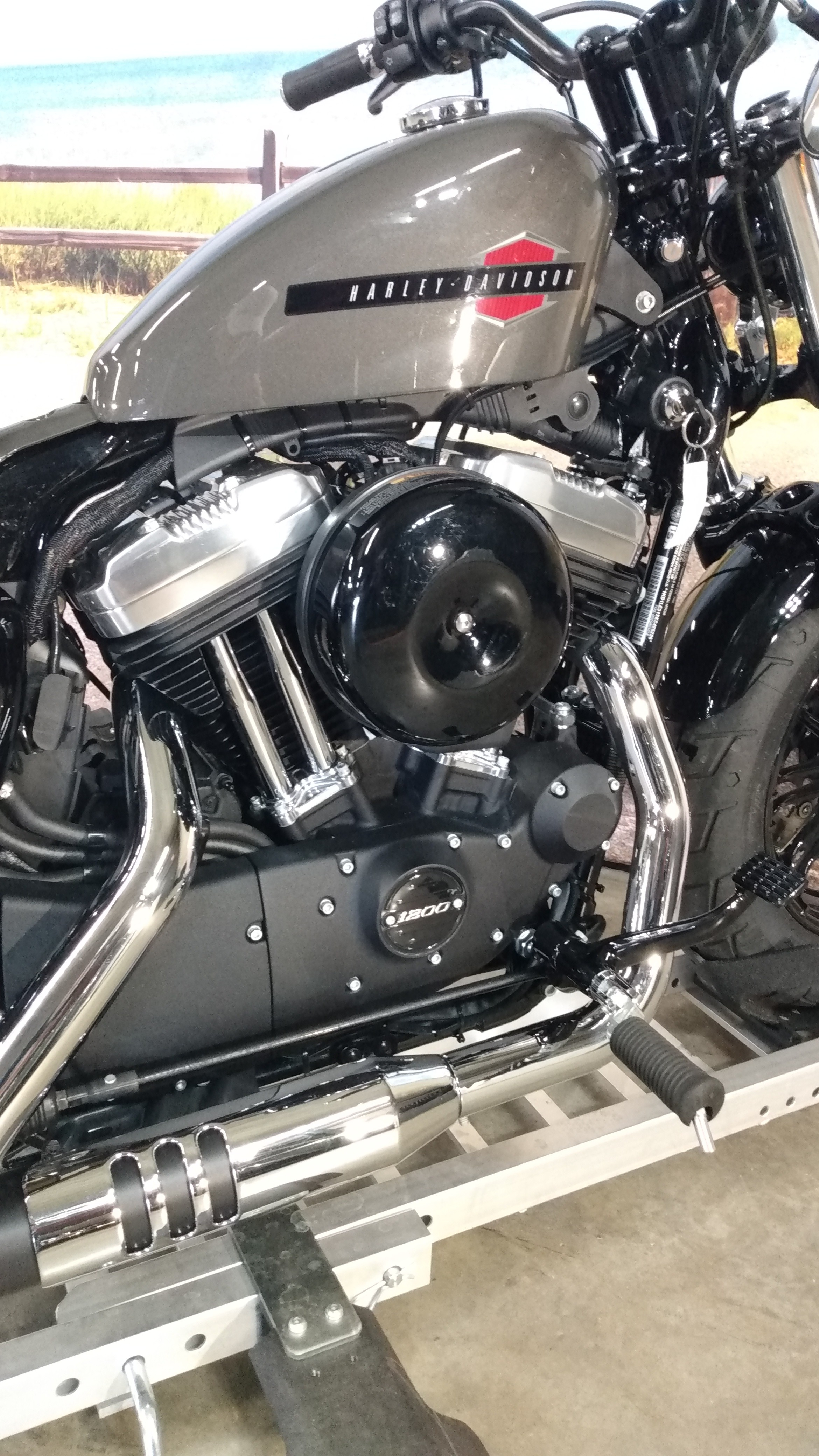 2019 Harley-Davidson Sportster Forty-Eight at Hot Rod Harley-Davidson