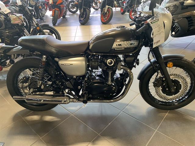 2019 Kawasaki W800 Cafe Cafe at Star City Motor Sports