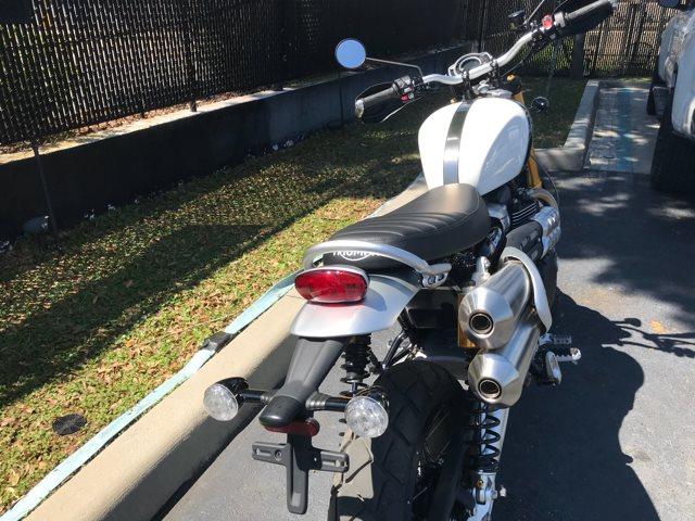 2019 Triumph Scrambler 1200 XE | Tampa Triumph