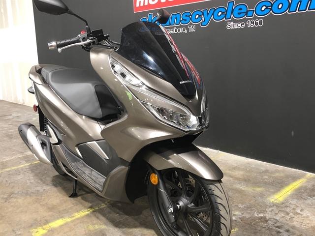2019 Honda PCX 150 at Sloans Motorcycle ATV, Murfreesboro, TN, 37129