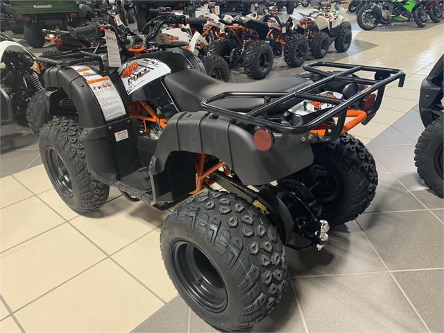 2021 Kayo BULL 150 at Star City Motor Sports