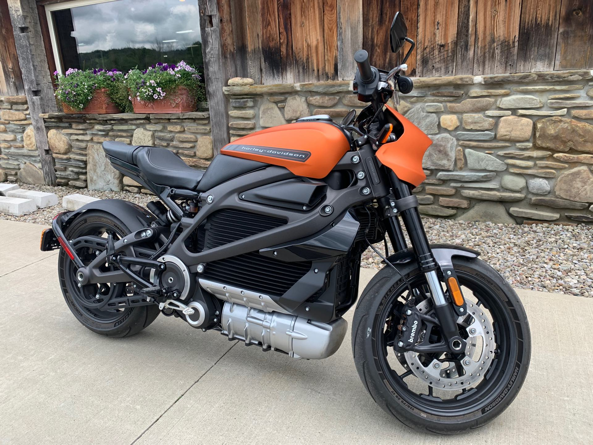 2020 Harley-Davidson Electric LiveWire at Arkport Cycles