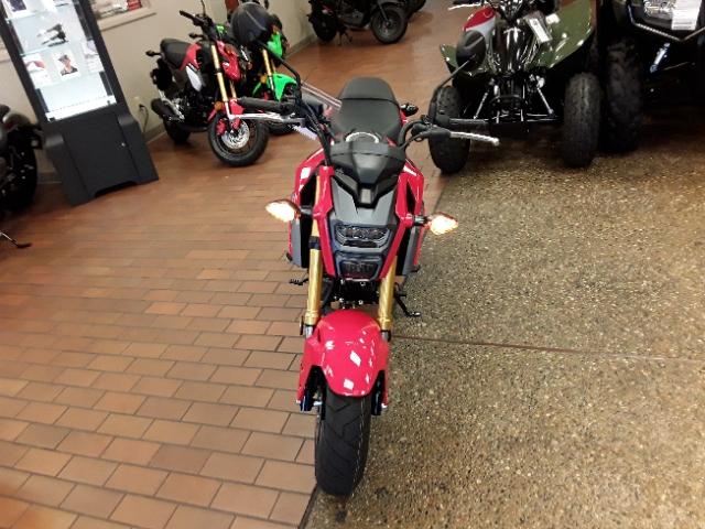2018 Honda Grom Base at Mungenast Motorsports, St. Louis, MO 63123
