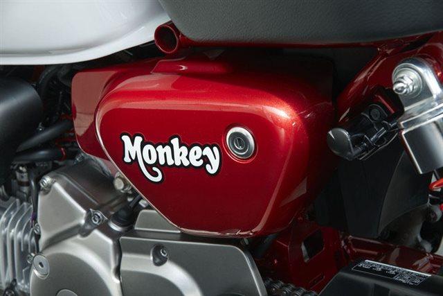 2019 Honda Monkey Base at Kodiak Powersports & Marine