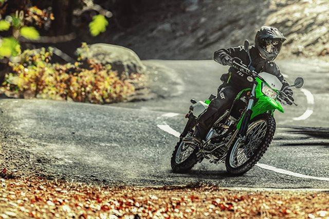 2021 Kawasaki KLX 300 at Sun Sports Cycle & Watercraft, Inc.