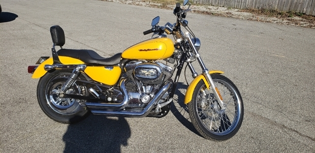 2006 Harley-Davidson Sportster 1200 Custom at Thornton's Motorcycle - Versailles, IN