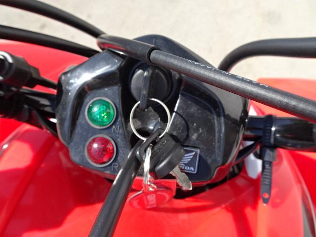 2019 Honda TRX 250X at Genthe Honda Powersports, Southgate, MI 48195