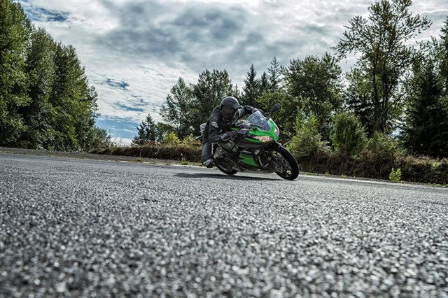 2016 Kawasaki Ninja 300 ABS KRT Edition at Ehlerding Motorsports