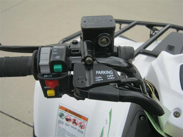 2018 Kawasaki Brute Force 300 at Brenny's Motorcycle Clinic, Bettendorf, IA 52722