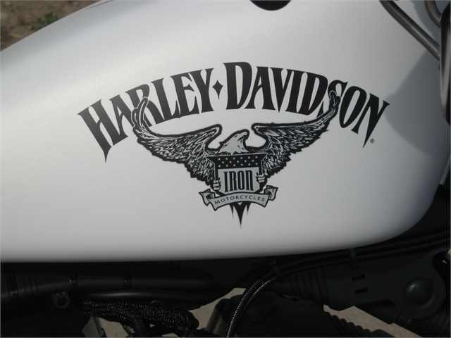 2013 Harley-Davidson XL883N Iron at Brenny's Motorcycle Clinic, Bettendorf, IA 52722