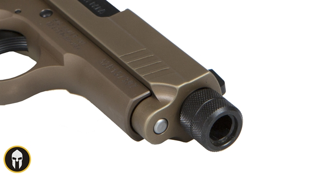 2020 Sig Sauer P938 at Harsh Outdoors, Eaton, CO 80615