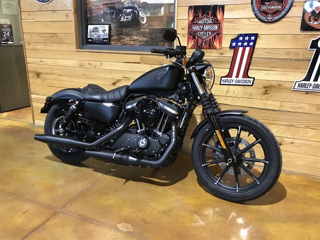 2020 Harley-Davidson Sportster Iron 883 at Thunder Road Harley-Davidson