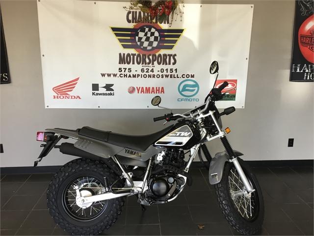 2021 Yamaha TW 200 at Champion Motorsports