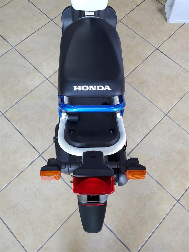2022 Honda Ruckus Base at Sun Sports Cycle & Watercraft, Inc.