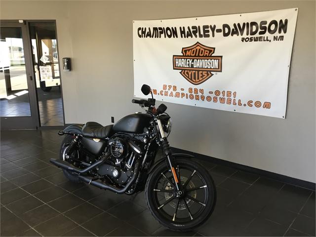 2019 Harley-Davidson Sportster Iron 883 at Champion Harley-Davidson