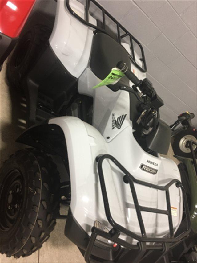 2018 Honda FourTrax Recon Manual Shift Base at Genthe Honda Powersports, Southgate, MI 48195