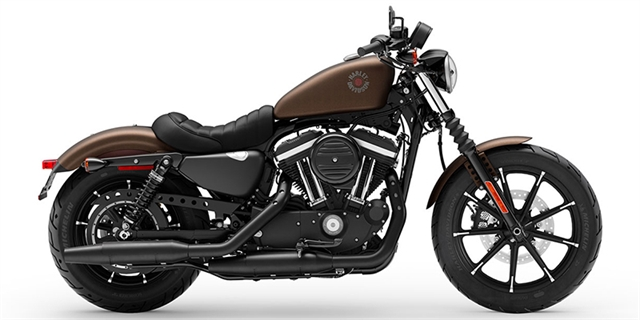 2019 Harley-Davidson Sportster Iron 883 at Rooster's Harley Davidson
