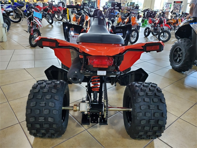 2021 Can-Am DS 250 at Sun Sports Cycle & Watercraft, Inc.