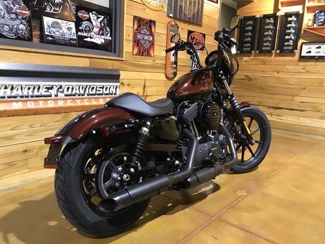 2019 Harley-Davidson Sportster Iron 1200 at Thunder Road Harley-Davidson