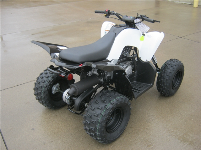 2019 Yamaha Raptor 90 at Brenny's Motorcycle Clinic, Bettendorf, IA 52722