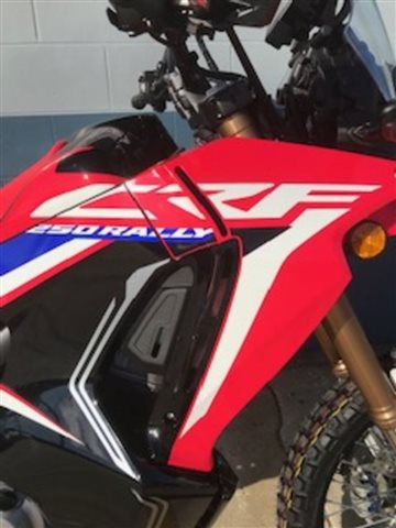 2020 Honda CRF250L Rally 250L Rally at Powersports St. Augustine