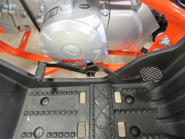 2021 Kayo PREDATOR 125 at Sky Powersports Port Richey