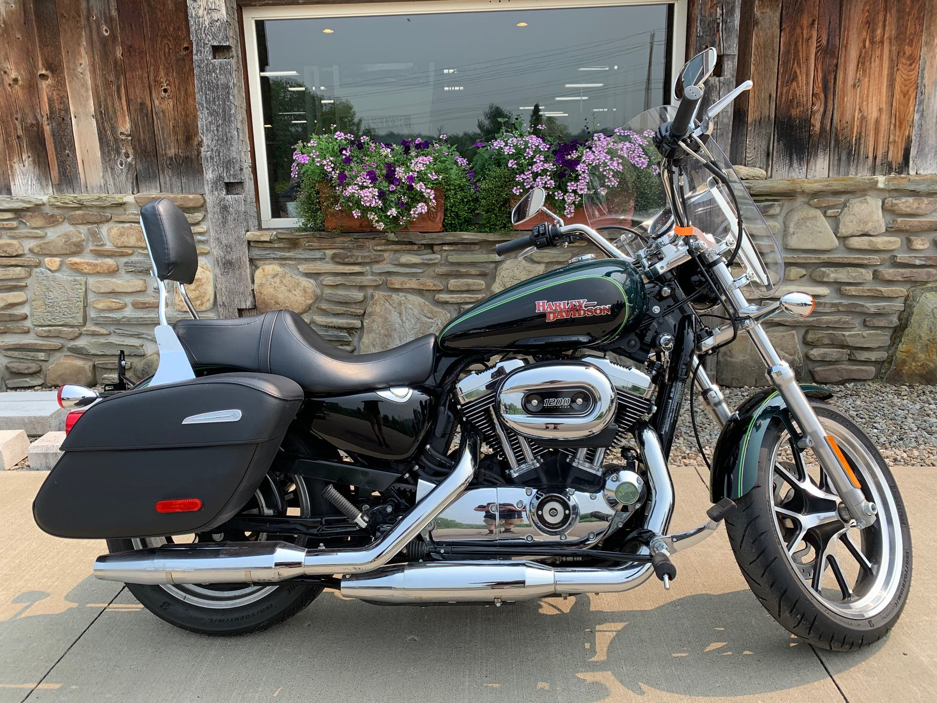2015 Harley-Davidson Sportster SuperLow 1200T at Arkport Cycles