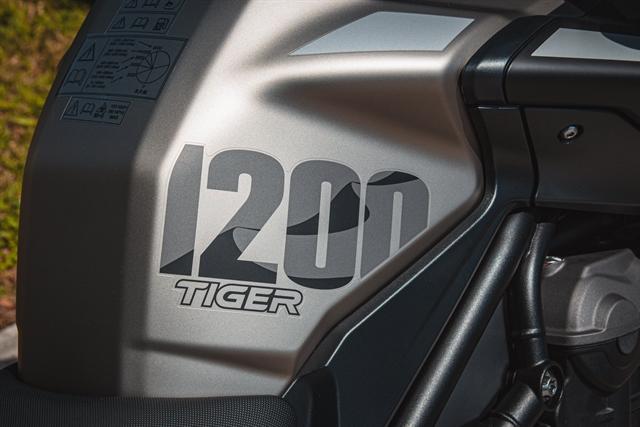 2020 Triumph Tiger 1200 Desert Edition at Tampa Triumph, Tampa, FL 33614