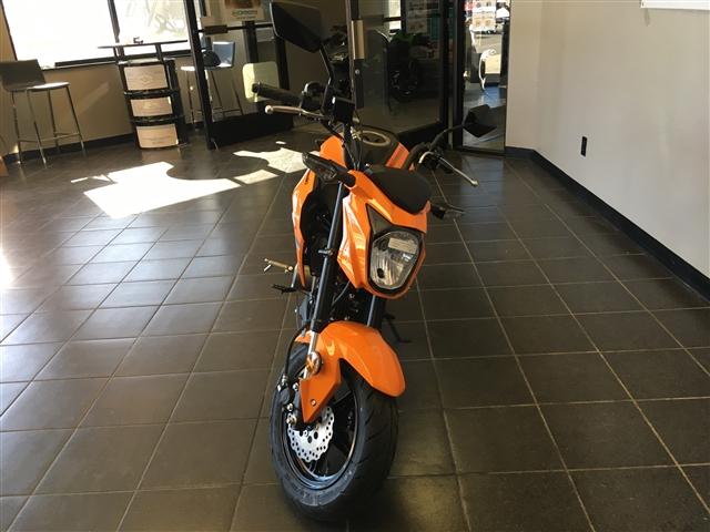 2019 Kawasaki Z125 PRO Base at Champion Motorsports, Roswell, NM 88201