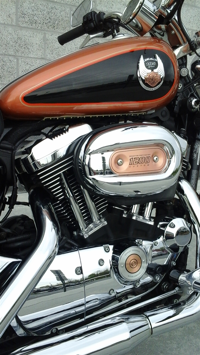 2008 Harley-Davidson Sportster 1200 Custom at Yamaha Triumph KTM of Camp Hill, Camp Hill, PA 17011
