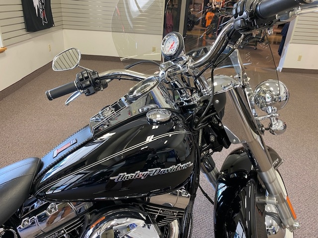 2016 HARLEY-DAVIDSON FLSTN Deluxe at Carlton Harley-Davidson®