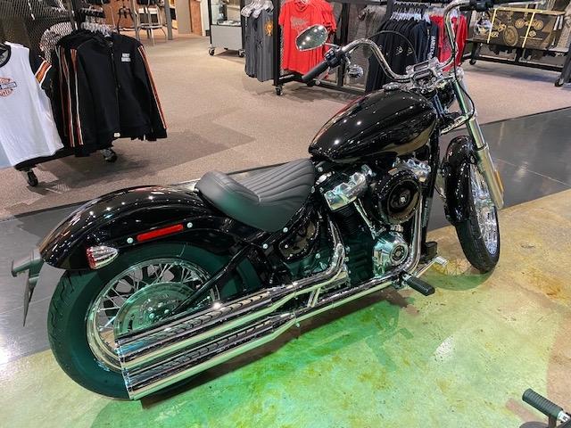2020 Harley-Davidson FXST at Carlton Harley-Davidson®