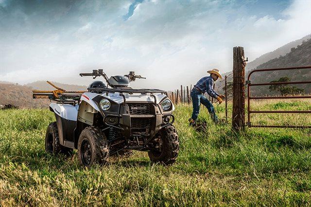 2021 Kawasaki Brute Force 300 at ATVs and More