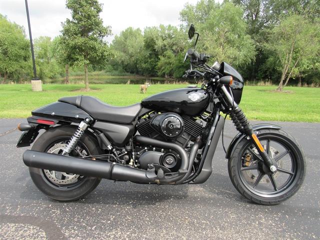 2017 Harley-Davidson Street 500 at Conrad's Harley-Davidson