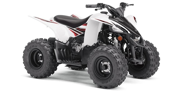 2019 Yamaha YFZ 50 at Youngblood Powersports RV Sales and Service
