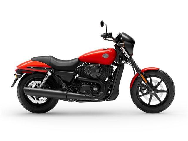 2020 Harley-Davidson XG500 - Street  500 at Roughneck Harley-Davidson