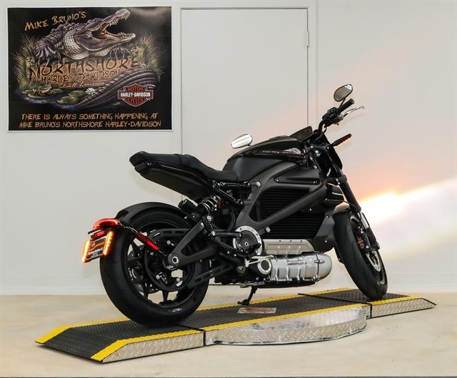2020 Harley-Davidson ELW at Mike Bruno's Northshore Harley-Davidson
