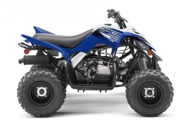 2019 Yamaha Grizzly 90 at Pete's Cycle Co., Severna Park, MD 21146