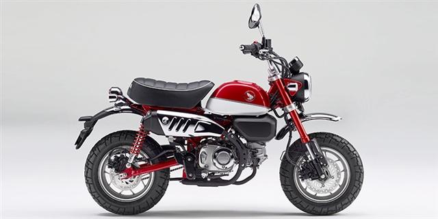 2019 Honda Monkey Base at Thornton's Motorcycle - Versailles, IN