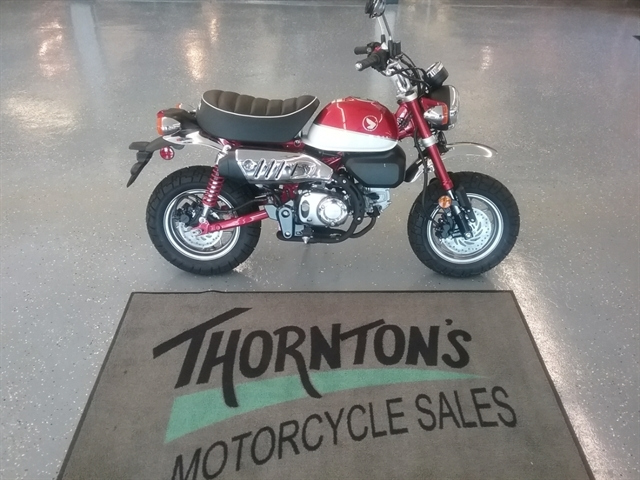 2019 Honda Monkey Base at Thornton's Motorcycle - Versailles, IN